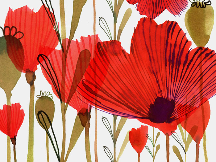 Margaret Berg: Poppies